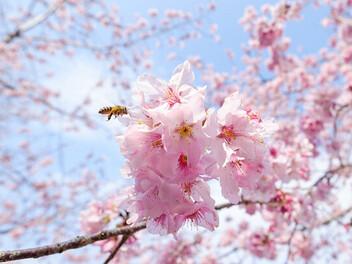 【攝影眼的培養】第94期春季號美圖徵件