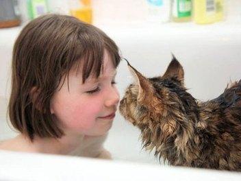 溫暖 系 影像 故事,自閉小畫家 Iris 和貓咪 Thula 間的 純真 童年