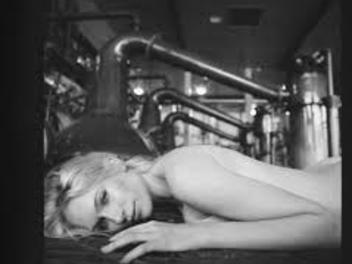 麥卡倫攝影大師系列第一版:Rankin