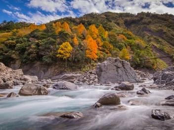 新竹 攝影 私房 景點 分享:秀巒 楓之谷