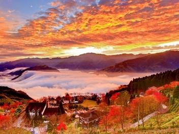 新竹 攝影 私房 景點 分享:櫻花雲海日出 山上人家