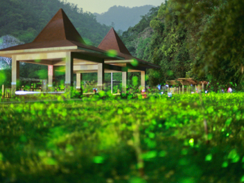 新竹 攝影 私房 景點 分享:螢光軌跡 新竹螢火蟲季