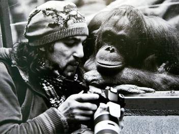 動物界中驚現攝影同好!?14張動物搭訕攝影人的逗趣畫面