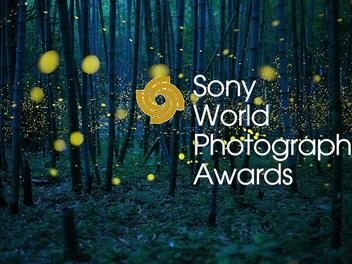 認識 SWPA 索尼世界攝影大獎,將台灣作品推向世界舞台!