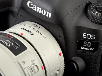 全區61點支援最大光圈F8自動對焦 - Canon EOS 5D Mark IV讓望遠取景構圖變得更加彈性、自由