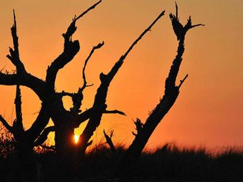 當個追光的少年!8個技巧教你拍出美麗的日落餘暉