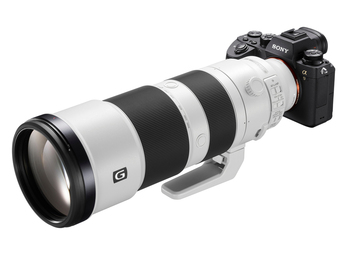 運動、生態攝影夢幻逸品 - Sony FE 600mm F4.0 G Master &FE 200-600mm F5.6-6.3 G正式發售!