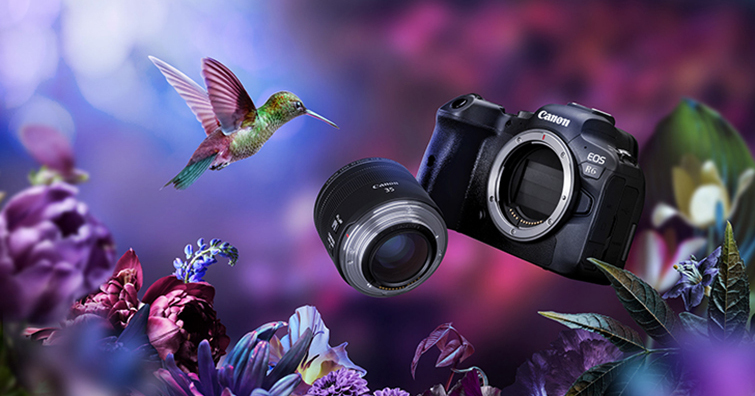 Canon EOS R6台灣8/27正式開賣,單機身售價NT$ 76,900
