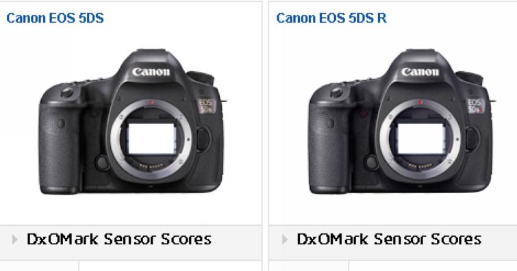 DXOMark 感光元件測試成績公佈!Canon EOS 5DS/5DS R 拿下自家史上最高分